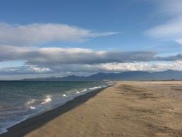 Canet-Plage_(march_2008)_249 1