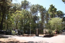 Emplacement camping taxo les pins
